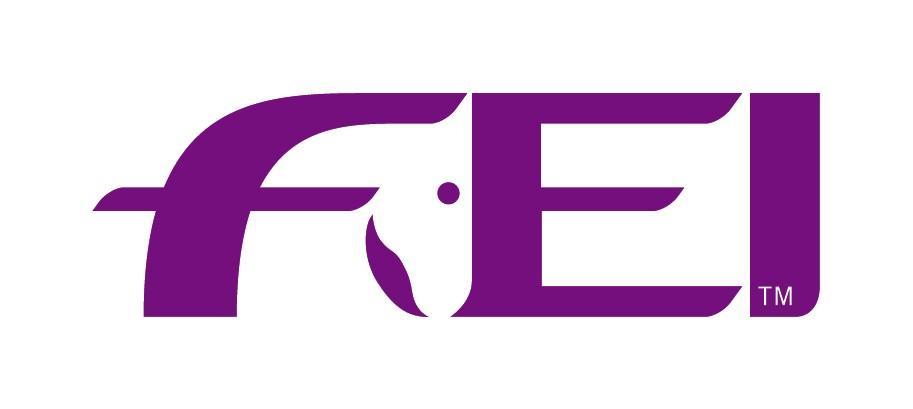 FEI_ _Logo