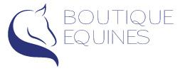 boutique equines logo